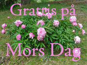 Mors Dag-kort 2 / Swedish Mother's Day card 2
