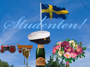 Studenten-kort 1 / Swedish Graduation card 2