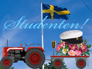 Studenten-kort 2 / Swedish Graduation card 3